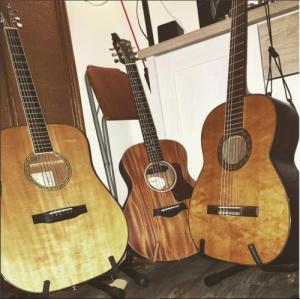 drei-gitarren-in-einer-reihe-larrivee-hanika-taylor